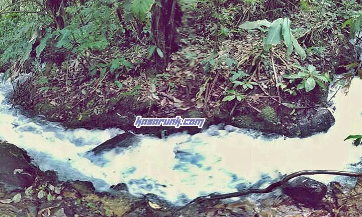 Curug Cibeureum di Jalur Pendakian Gunung Gede : Pintu Masuk