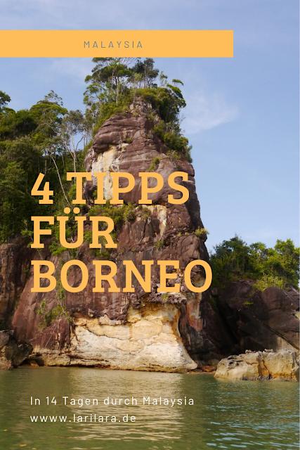 Pinterest Bild Borneo