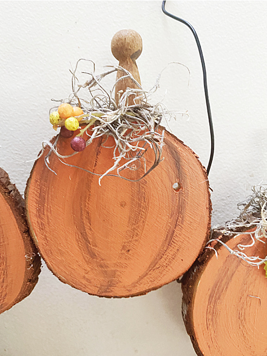 pumpkins with stems and moss