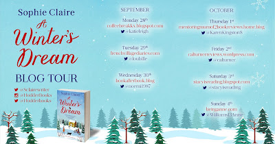 French Village Diaries book review A Winter's Dream Sophie Claire