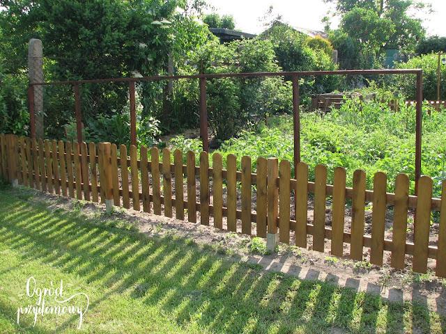 uprawa pionowa, podpora pod ogórki, ogród przydomowy