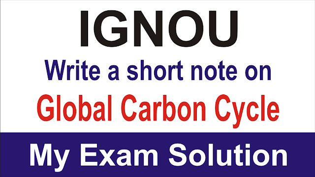 Write a short note on global carbon cycle