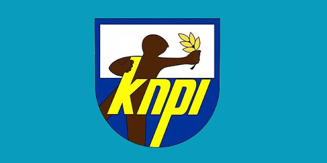 Gegara Tolak Kongres Bersama, Ketua KNPI Sumut Bakal Dipecat?