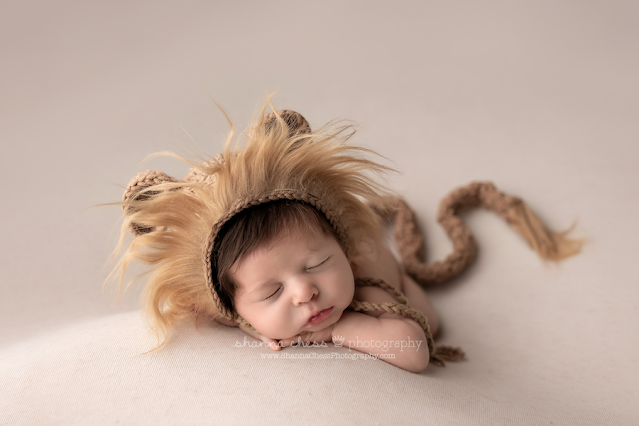 Eugene Oregon newborn pictures, baby in lion hat and tail
