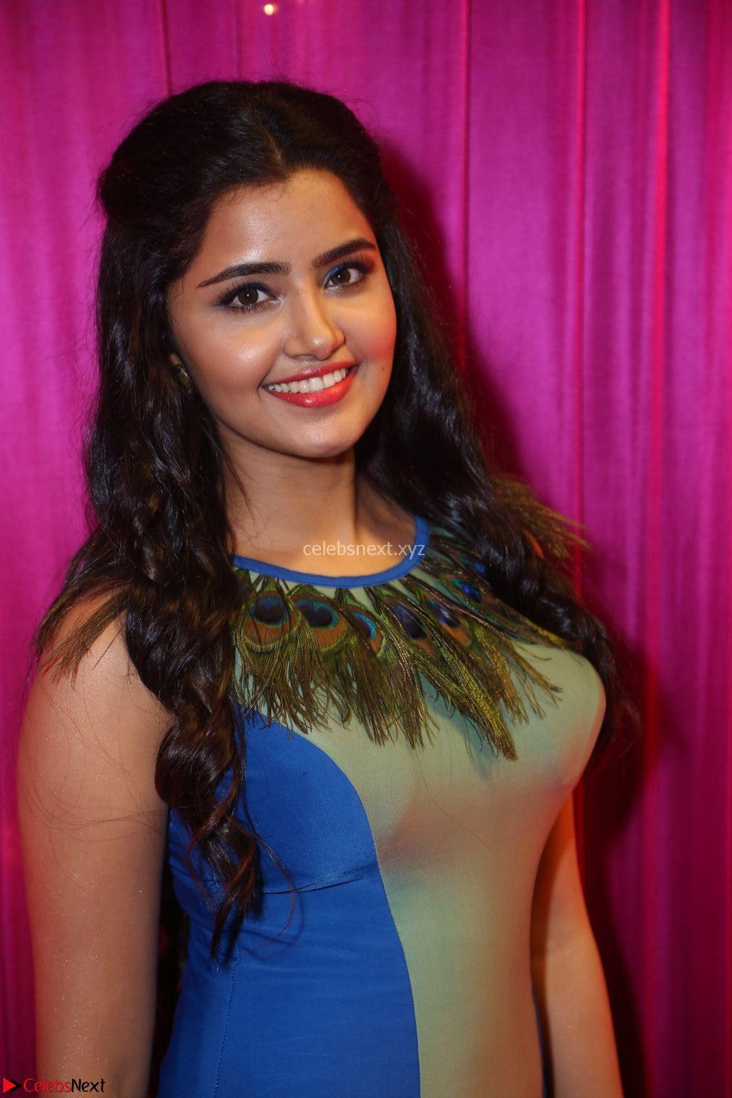 Anupama Paramesvaran in beautiful Sleeveless Gown at Zee Telugu Apsara Awards 2017 9th April 2017~ CelebsNext Exclusive