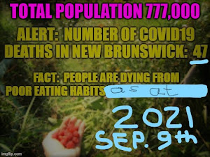 End the Fraud in New Brunswick!