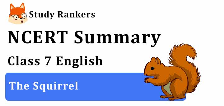 The Squirrel Poem Class 7 English Summary