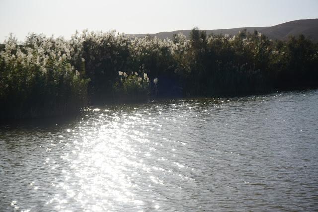 שמש באגם ירוחם