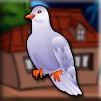 Play Games2Jolly Racing Pigeon…