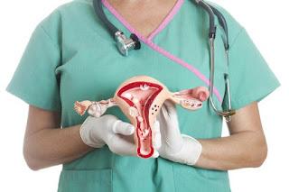 espessura ideal do endométrio para implantação do embrião