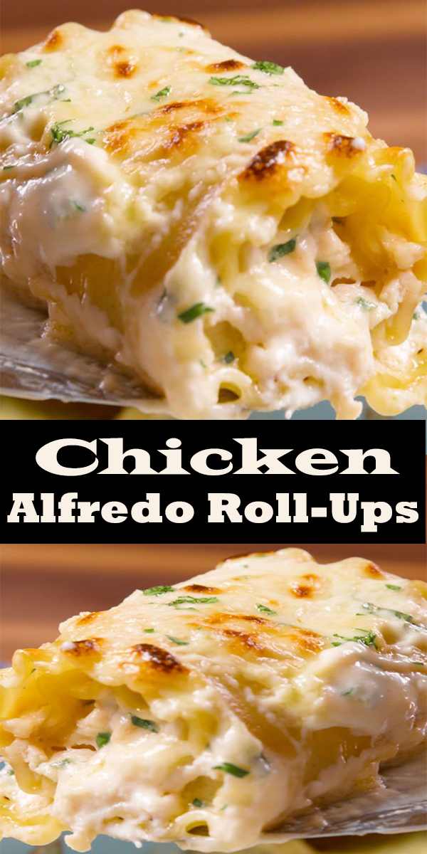 Chicken Alfredo Roll-Ups #Chicken #Alfredo #Roll-Ups #ChickenAlfredoRoll-Ups #dinner #food