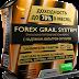 100% рабочая стратегия форекс Forex Grail System