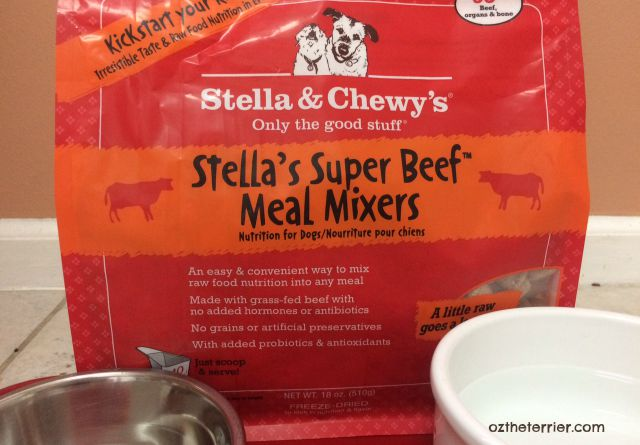 Oz the Terrier says Kick Up your Kibble with Stella and Chewy's Meal Mixers raw pet food