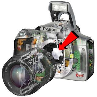 Gambar konstruksi kamera DSLR yang menujukkan lokas cermin yang membedakan kamera DSLR dan kamera mirrorless