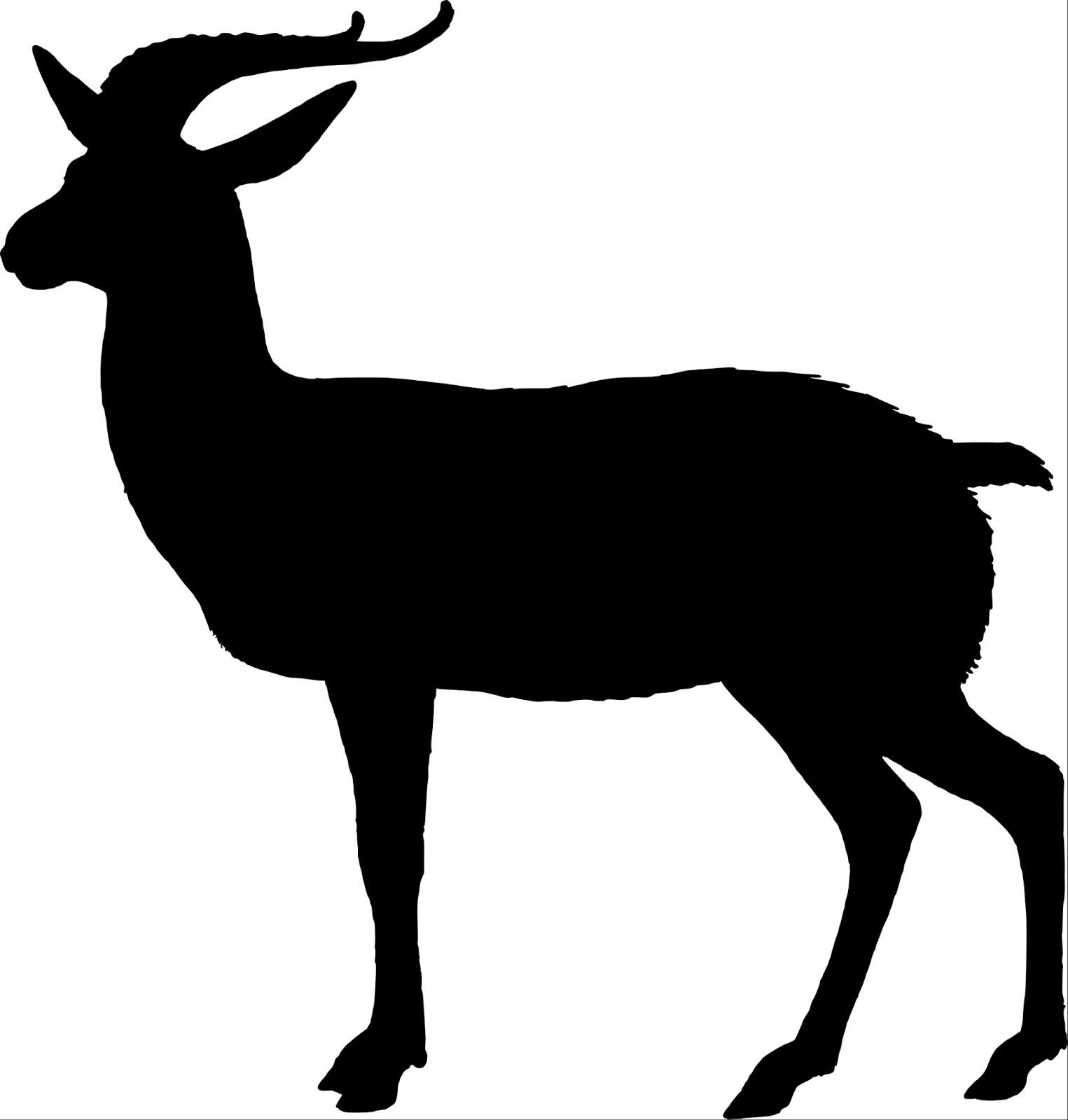 Boer Goat Silhouette - photo#9