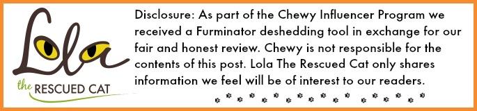 FURminator|chewy influencer