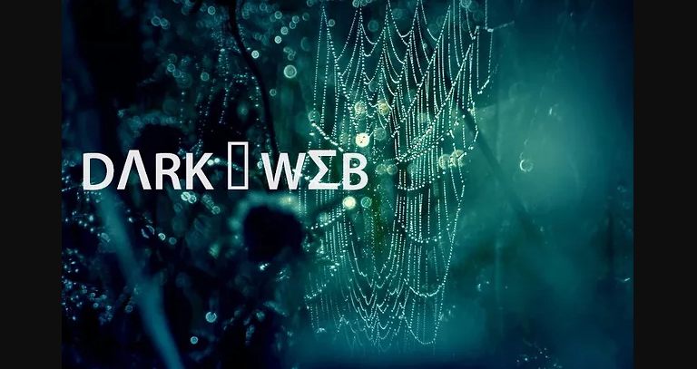 The Notorious Dark Web: What You Should Know About It
