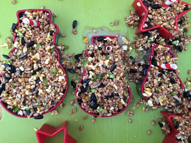 Bird seed in the cookie cutters with straws in to make holes