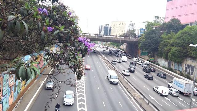 Vista a partir da ponte da Rua Galvão Bueno