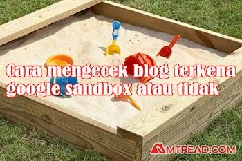 2 Cara Mengecek Blog Terkena Google Sandbox Atau Tidak