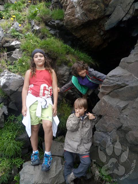 Suede-Scanie-Kullaberg-grotte-louveteaux