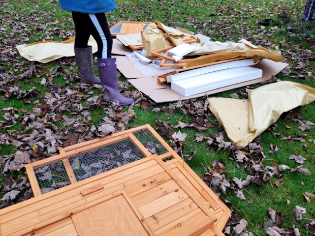 Big daughter is looking at the pieces of the wooden duck house which are laid out across the grass