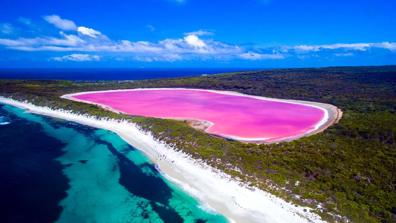 This Hot Pink Lake in Australia Is a Mystery