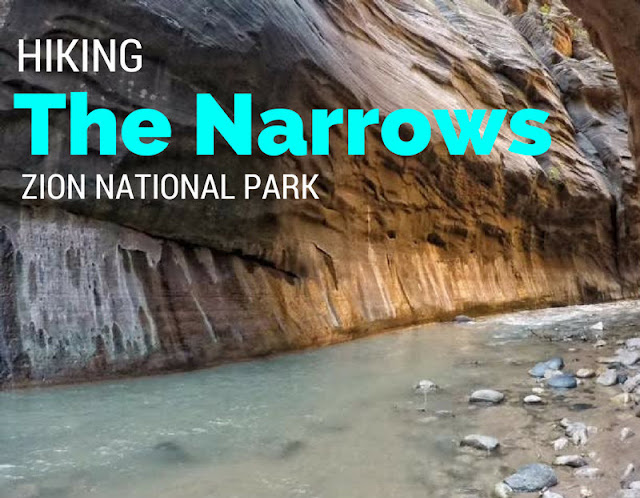 Hiking The Narrows, Zion National Park