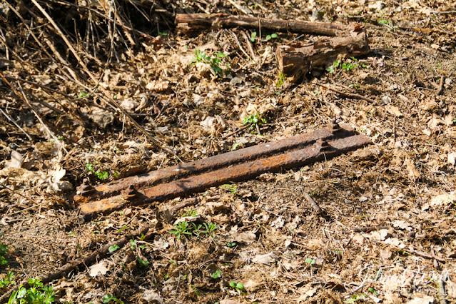 Schiene im Wald auf dem Lemberg