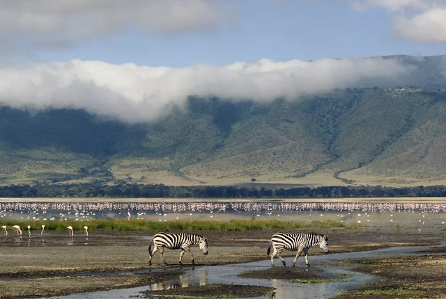 Ngorongoro Conservation Area, Tanzania: The Complete Guide