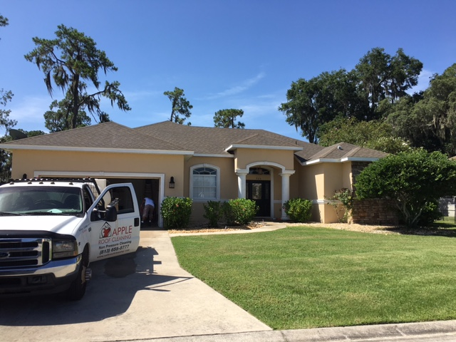 If You Would Like A Free Estimate On How Much It Will Cost To Clean Your  Shingle Or Tile Roof, Call Us At 813 655 8777 Today!