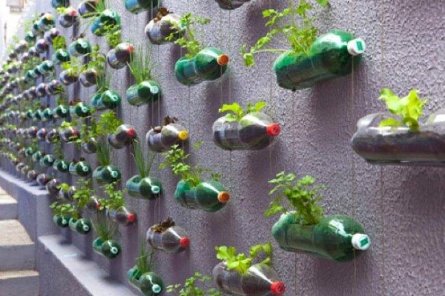 manualidad de botellas de plástico pintadas convertidas en maceteros
