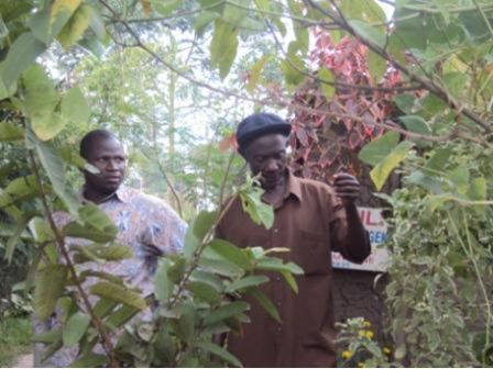 Radio stations have not done much to help rural farmers – ToroDev