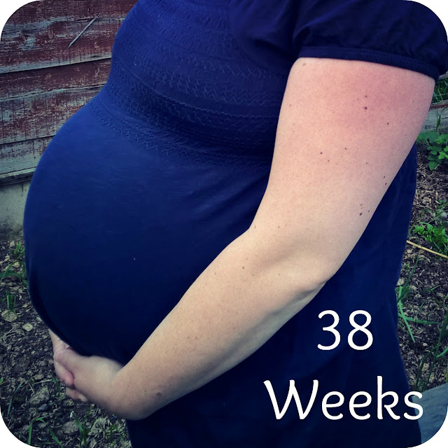 Red Rose Baby - 38 Weeks Update