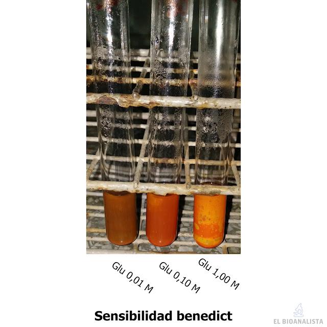 prueba de sensibilidad del reactivo benedict bioquímica