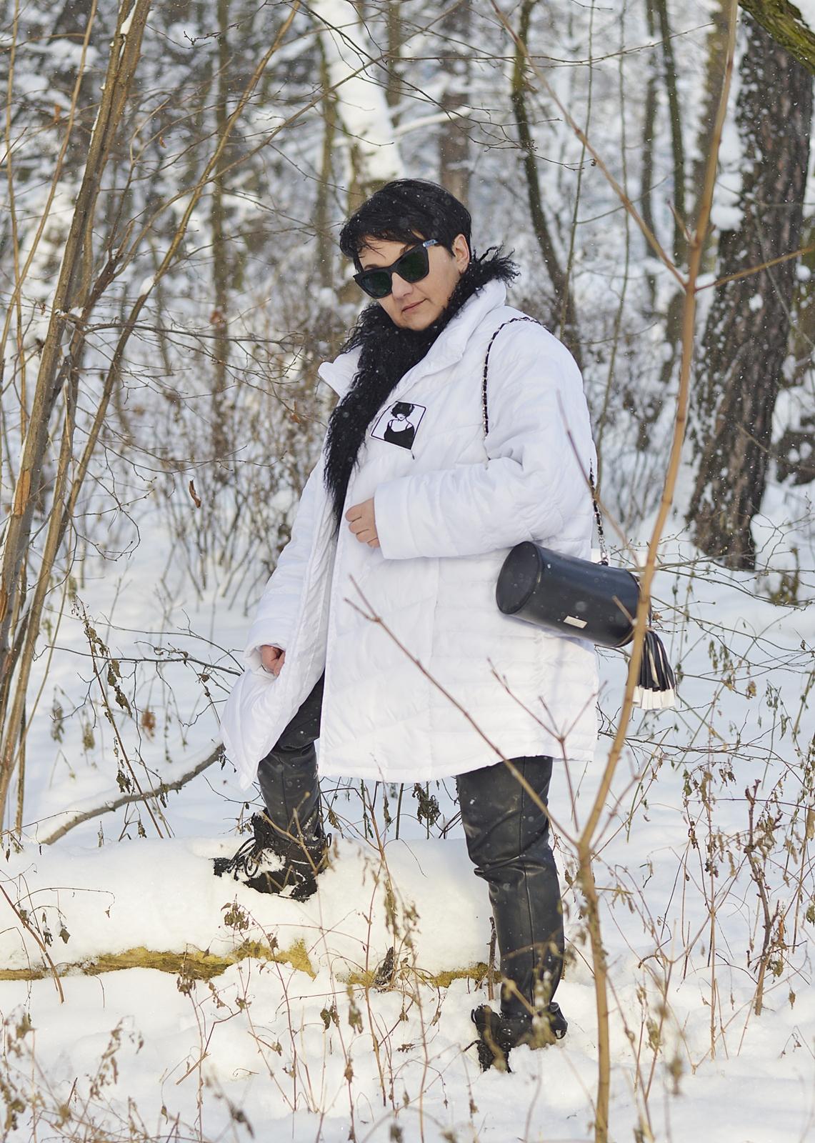 Winter stylization