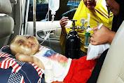Azril Penderita Tumor di Kepala, Akhirnya di Rujuk ke RSUDZA Banda Aceh