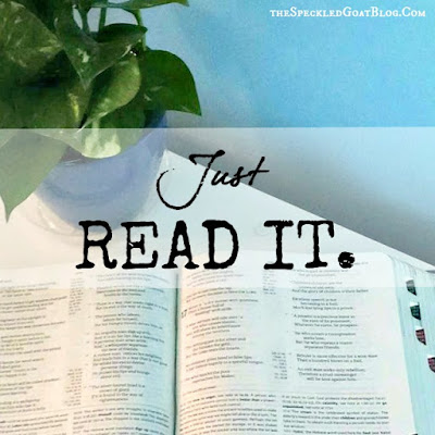 Scripture studies are good, but sometimes, we just need to read the bible in small pieces