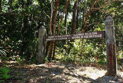 Menjelajahi Wisata Taman Nasional Ujung Kulon