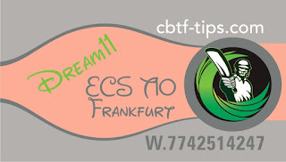Cricfrog Who Will win today European Cricket Series Wiesbaden vs Darmstadt ECS Ball to ball Cricket today match prediction 100% sure