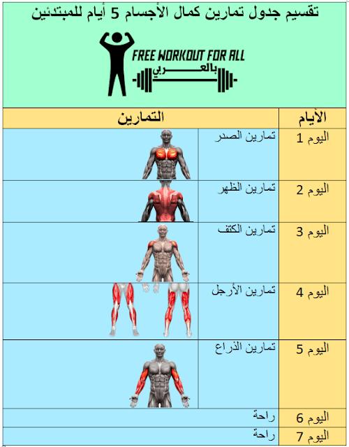 تقسيم جدول تمارين كمال الأجسام 5 أيام للمبتدئين