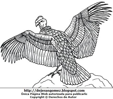 Dibujo de un cóndor parado en una roca con las alas extendidas o abiertas para colorear o pintar. Dibujo de cóndor de Jesus Gómez