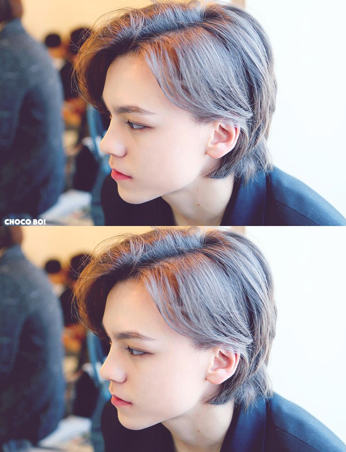 Seventeen Vernon's visual | Netizen Buzz