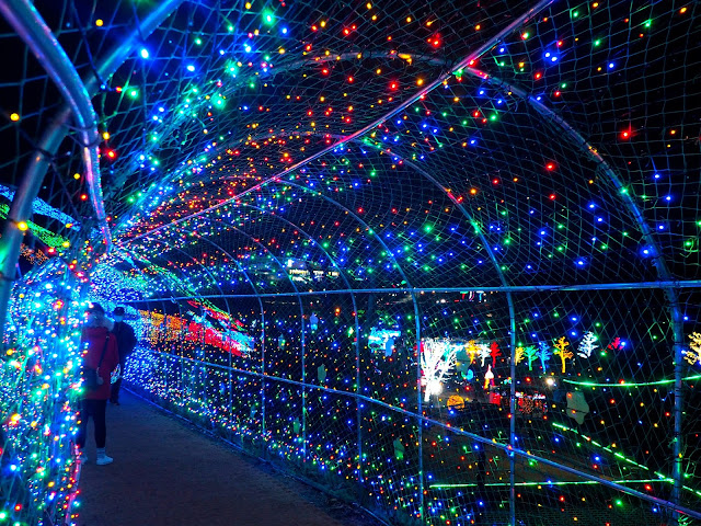 Inside the tunnel of lights at the Light Festival at Boseong Green Tea Plantation, South Korea