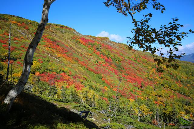 大雪山 赤岳 銀泉台
