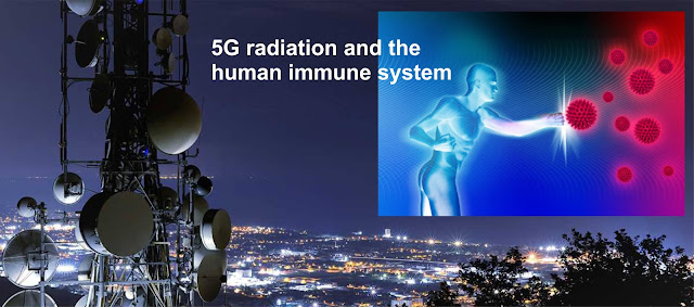 https://duluthreader.com/articles/2020/03/12/19851_chinas_massive_amount_of_immunotoxic_5g_networking