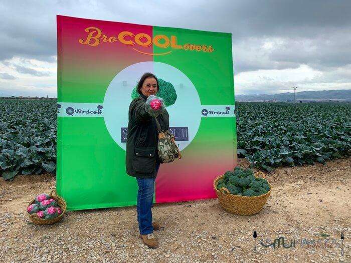 viaje a los campos de brocoli en Murcia