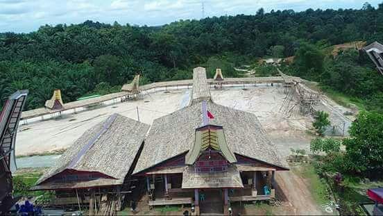 Upacara Adat Almarhum Luther Kombong Segera Digelar, 16 Kerbau di Rantepao Disiapkan