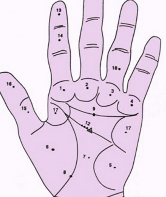 An sao tử vi trên lòng bàn tay cho nam mạng tuổi Đinh Sửu