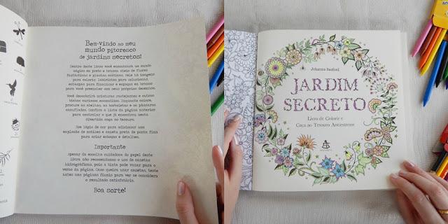 resenha jardim secreto